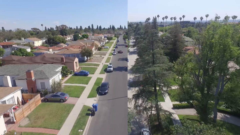 comparingneighborhoods1920.jpg