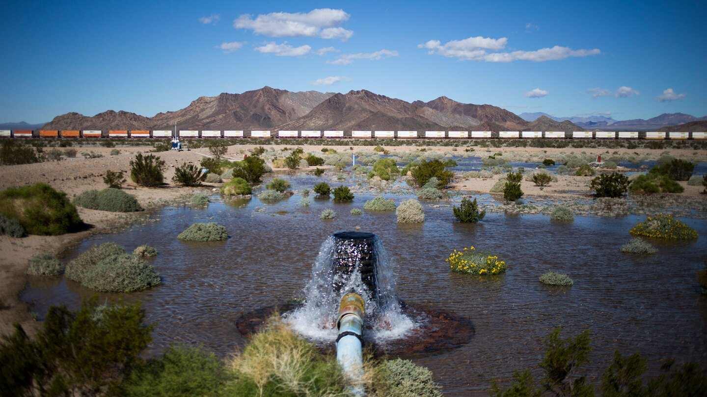 A percolating pond tests the permeability of water on Cadiz, Inc.'s property in Cadiz, CA. | Jenna Schoenefeld for The Washington Post via Getty Images