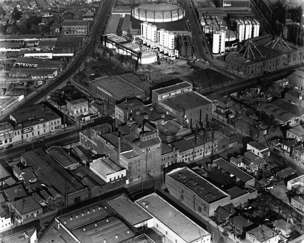 Aerial view of the Maier Brewing Company, nearly three decades after El Aliso fell to William Willoughby's axe. Courtesy of the Security Pacific National Bank Collection, Los Angeles Public Library.