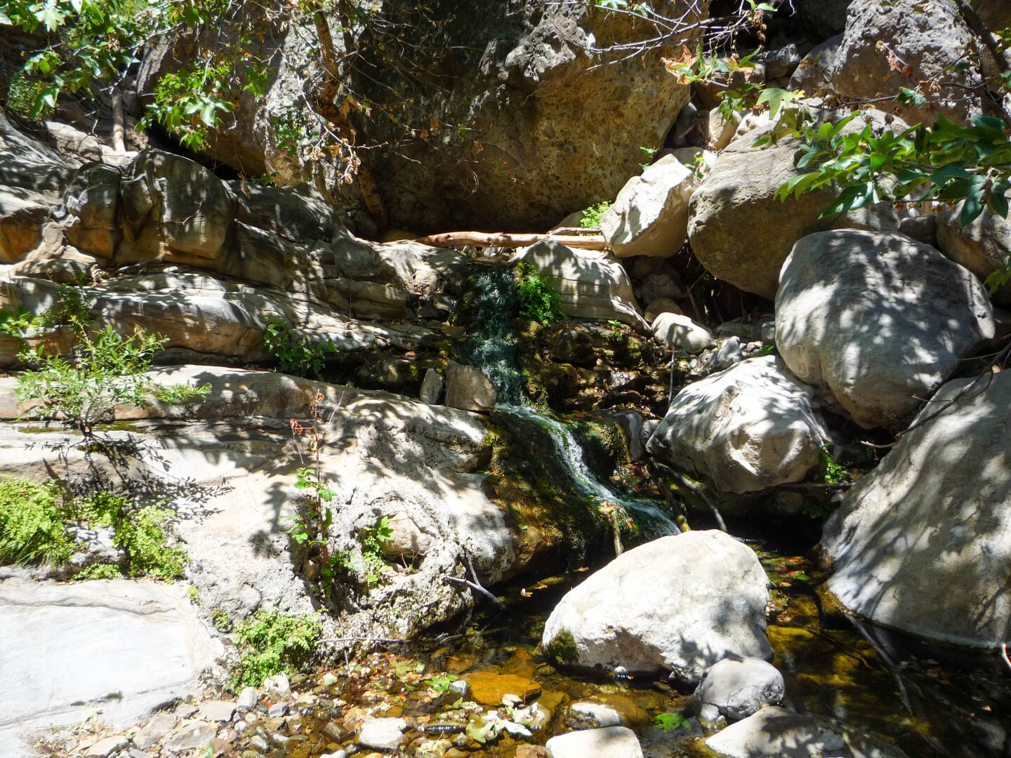 A stream at the Solstice Canyon hike in the Santa Monica Mountains.