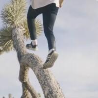 Parkour team member runs up Joshua tree trunk | Image: Storror
