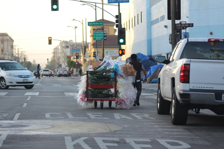 Man with flowers on cart pulls them through San Julian Intersection | Karen Foshay