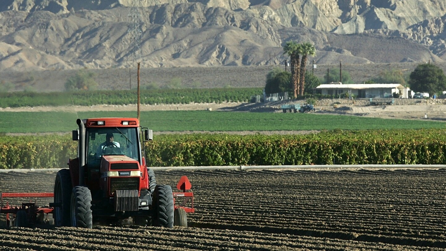 Farm in Coachella Valley near Mecca