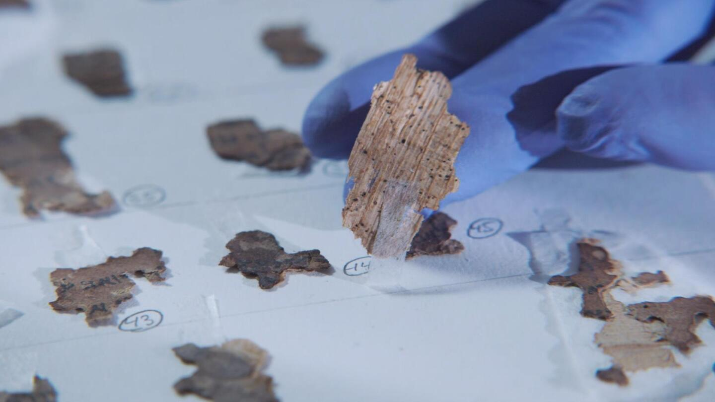 Newly surfaced fragments of the Dead Sea Scrolls.