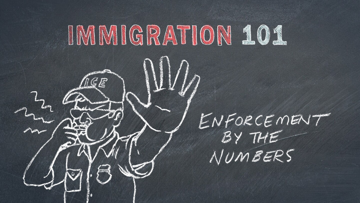 Immigration Enforcement by the Numbers Graphic