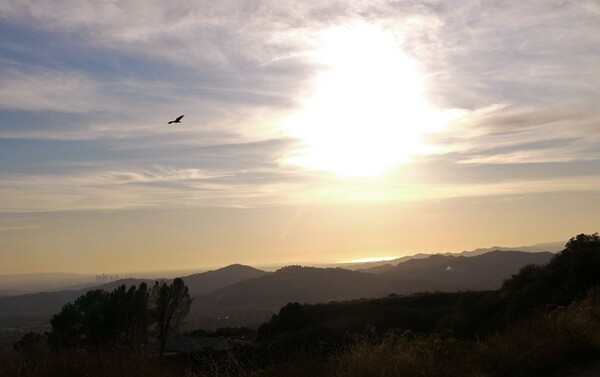 Downtown and ocean views from the Sunset Ridge Trail by Millard Canyon. Photo by Yosuke Kitazawa   KCET