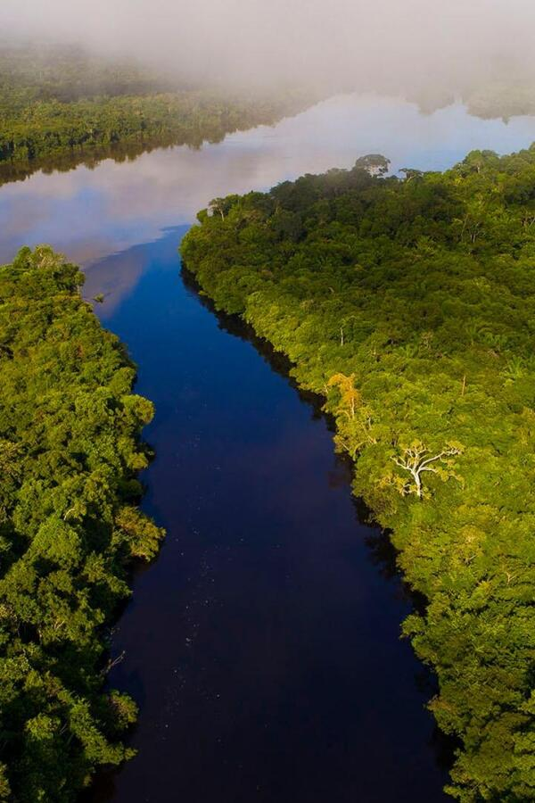 """Bird's eye view of the Amazon River. 
