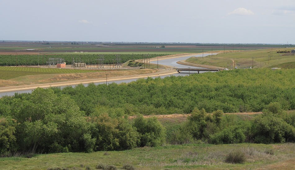 Agriculture along the Delta Waterway