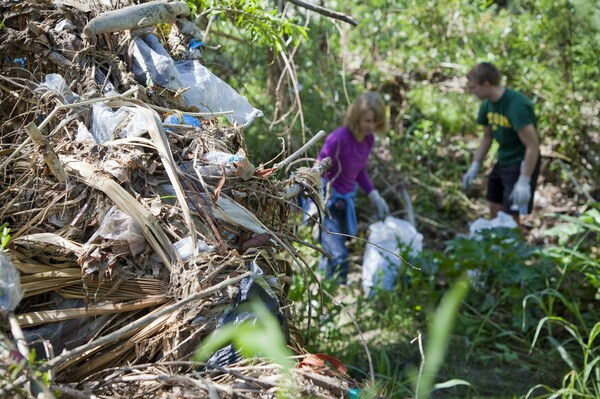 Trash wrapped in vegetation at Steelhead Park in Elysian Valley. Photo by Grove Pashley.