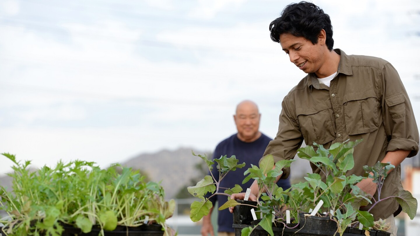 Fortino Morales III: UCR Community Garden