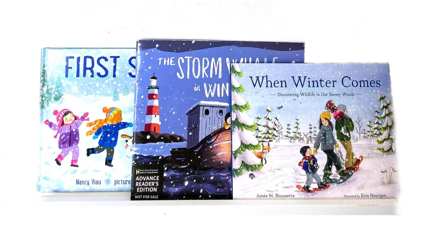 3 children's books about winter