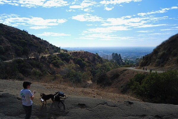 runyon-canyon-parking