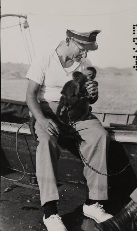 Man feeding monkey, Velero III, 1931-1941 | Allan Hancock Foundation Collection, USC Libraries