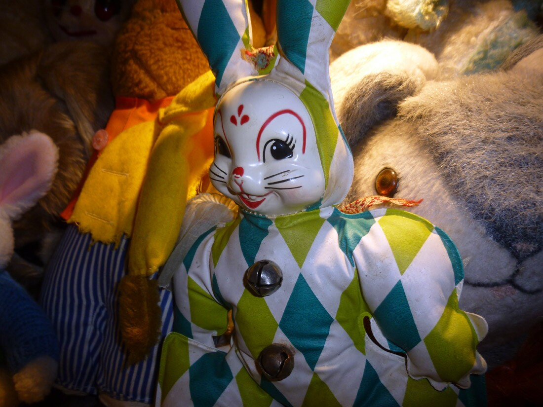 The Bunny Museum (1)