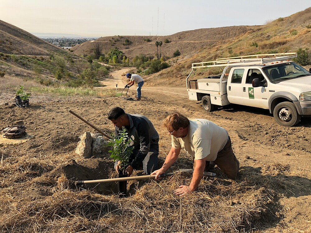 Tom Dwyer demonstrating proper tree planting for local youth at Ascot Hills. This was the last large habitat restoration project that Tom led. | Courtesy of North East Trees
