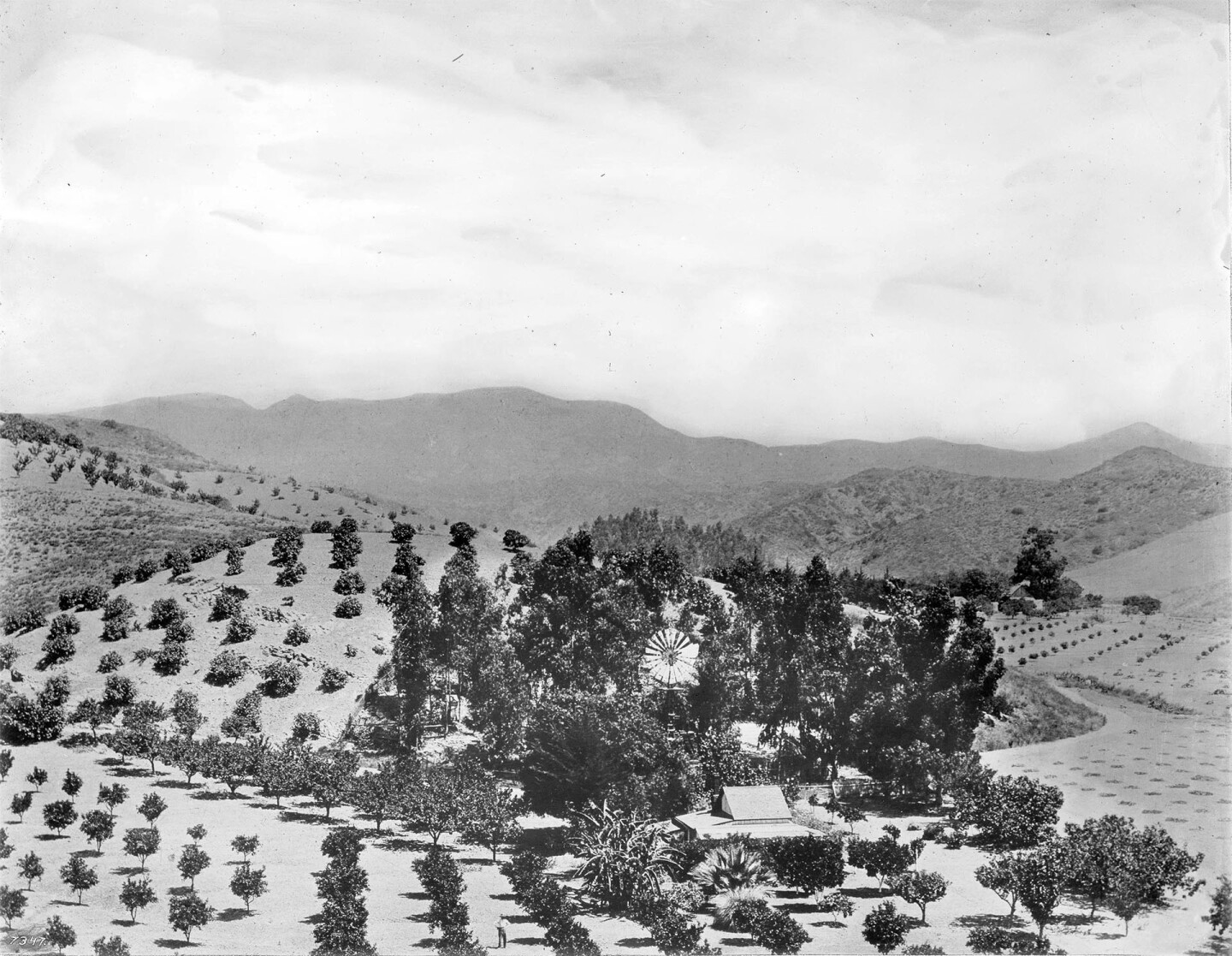 Henry Clausen'scitrus ranch at the mouth of Beachwood Canyon in 1910