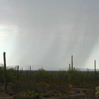 rain-monsoon-sonoyta-plain-5-10-16.jpg