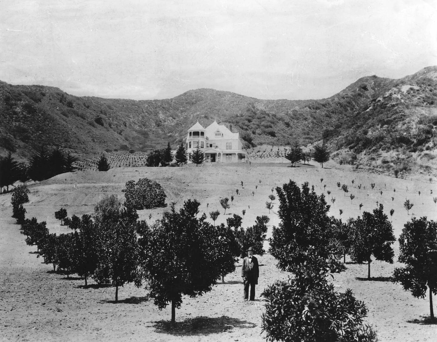 Charles Harper and his orchard, 1898