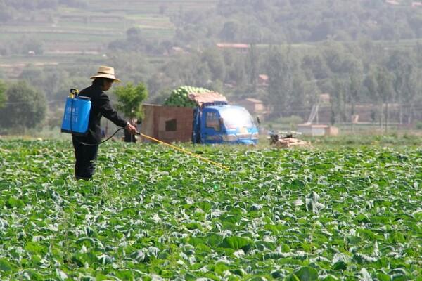 pesticidehuman