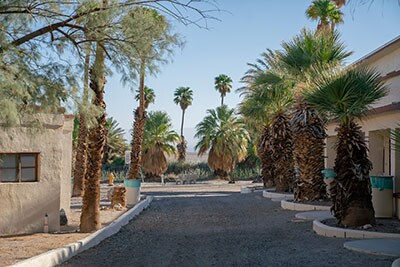 Looking back at the Boulevard of Dreams in Zzyzx | Katie Noonan