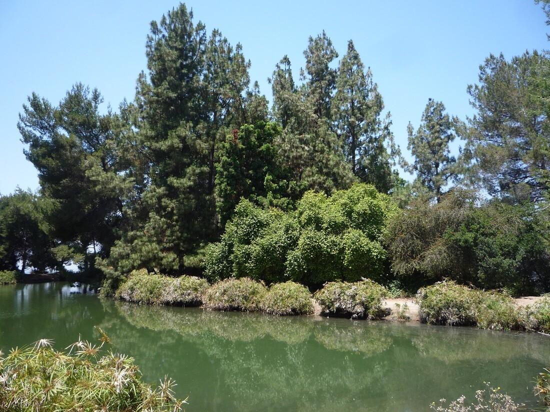 Debs Lake (2)