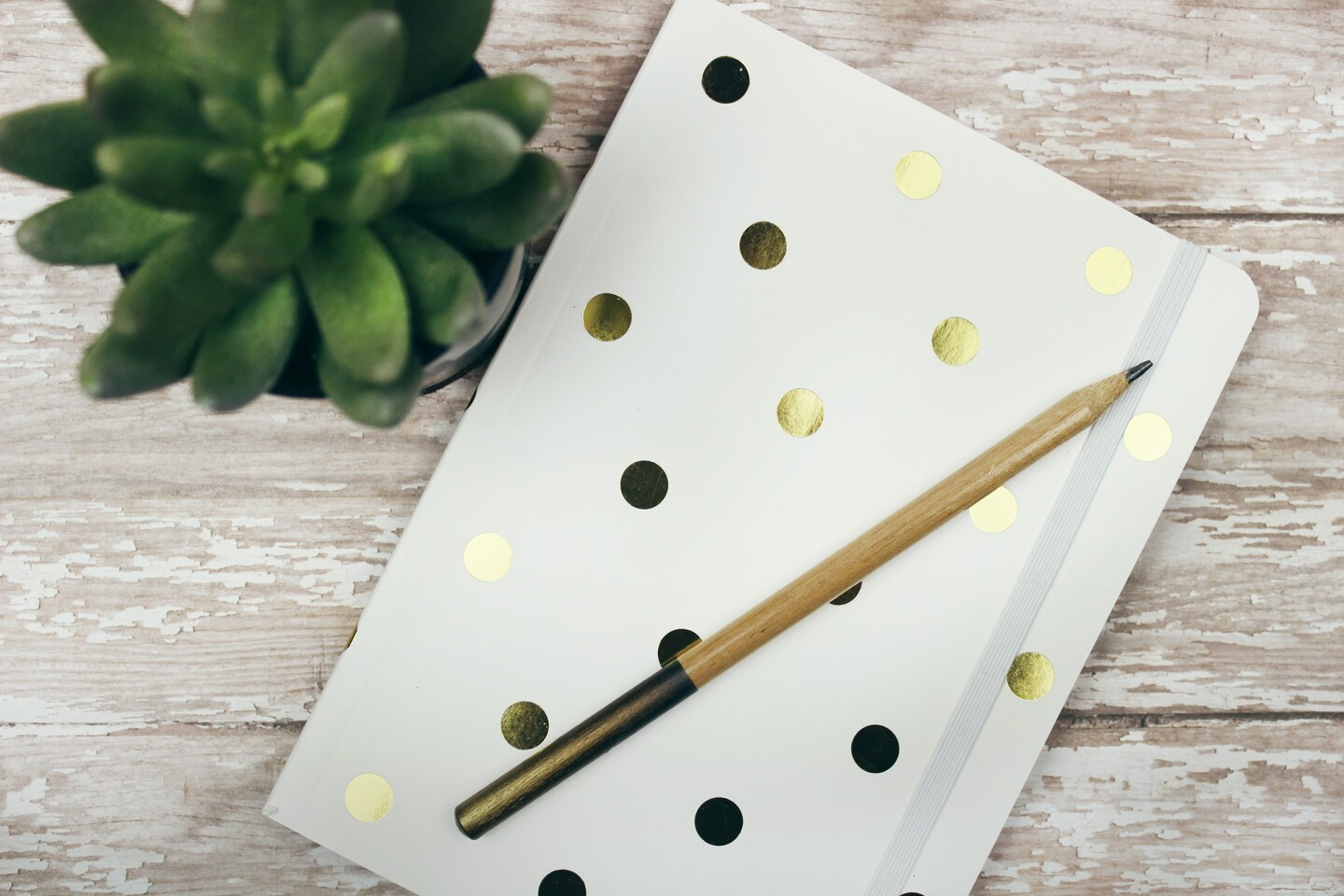 Gold and white polka dot notebook or journal sits on a white wooden desk with pencil and small planted succulent. | Jen Theodore / Unsplash