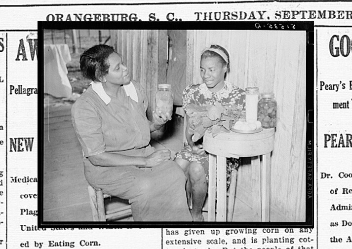 A nurse counsels a young pellagra sufferer on improving her diet. Gee's Bend, AL, 1939.