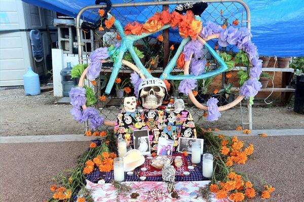 Bicycle Shrine at Proyecto Jardín