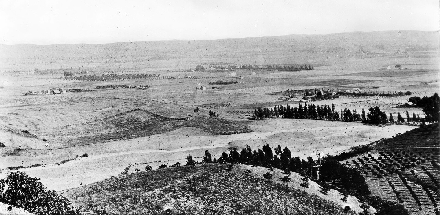 Panoramic view of Hollywood, looking from Gower Street and Temple Hill Drive, 1900.