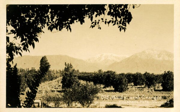 Mount Baldy partially shrouded by haze, possibly created by smudge pots. Courtesy of the City of Claremont History Collection, Honnold Mudd Library Special Collections, Claremont Colleges.