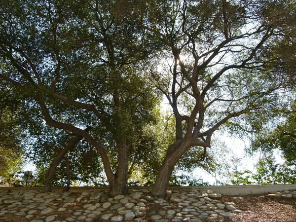 arroyo-seco02