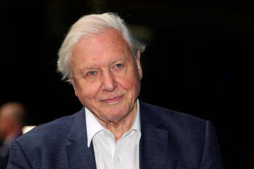 FILE PHOTO: Broadcaster and filmmaker David Attenborough attends the premiere of Blue Planet II at the British Film Institute in London, Britain, September 27, 2017. | REUTERS/Hannah McKay/File Photo