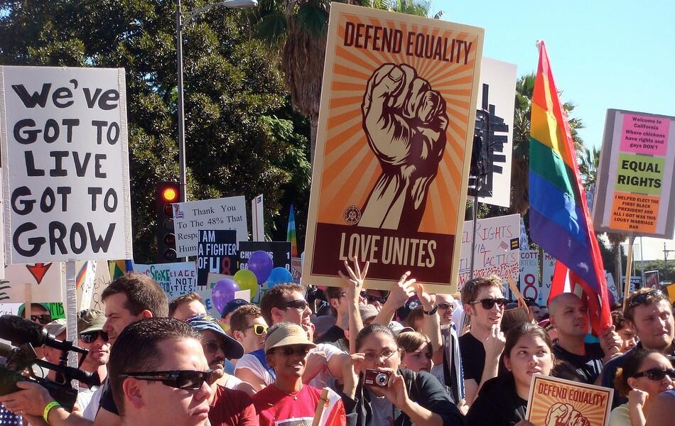 Prop 8 Protestors