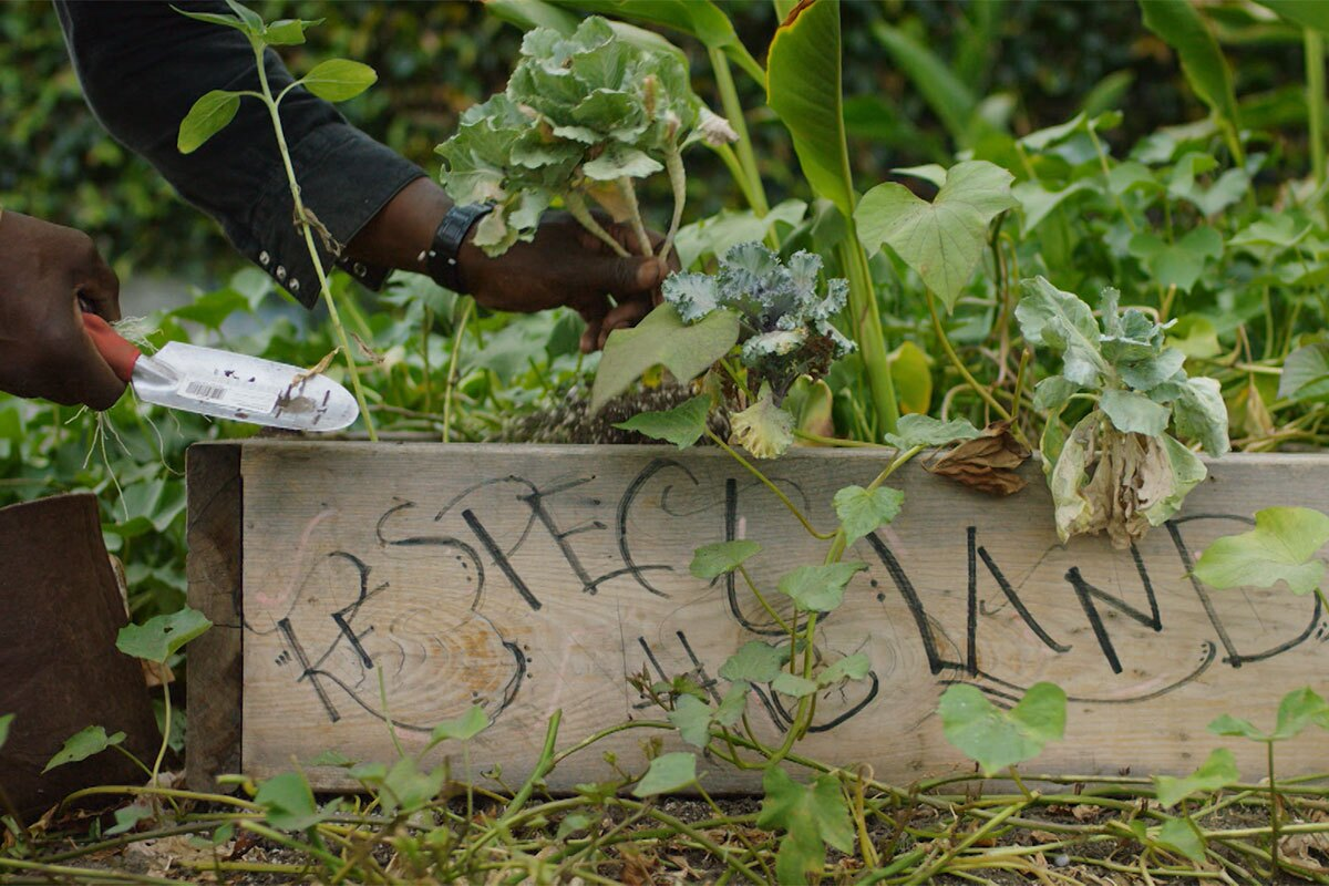"""Ron Finley gardening out of a planter labeled """"Respect the Land"""" in his garden. 