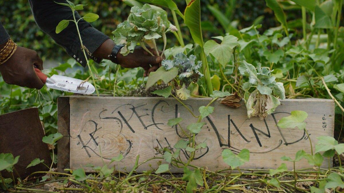 """Ron Finley gardening   Still from """"Broken Bread"""" Access"""