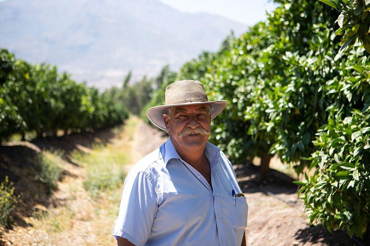 Daniel Bosch, the owner of Agrícola El Peñón, a large avocado plantation in Chile.  | Valeria Cardi/Thomson Reuters Foundation