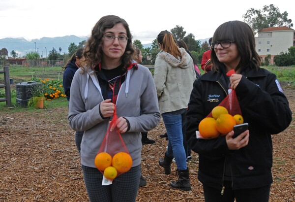 The students were able to take home fruits and vegetables from the Farm