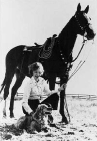 horse-velma.jpg