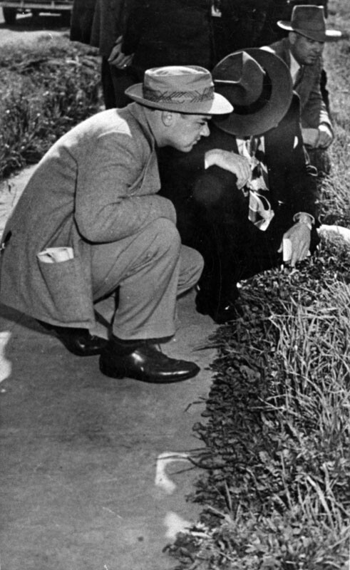Reporters at murder scene. 1947 | Image: Courtesy of Los Angeles Public Library