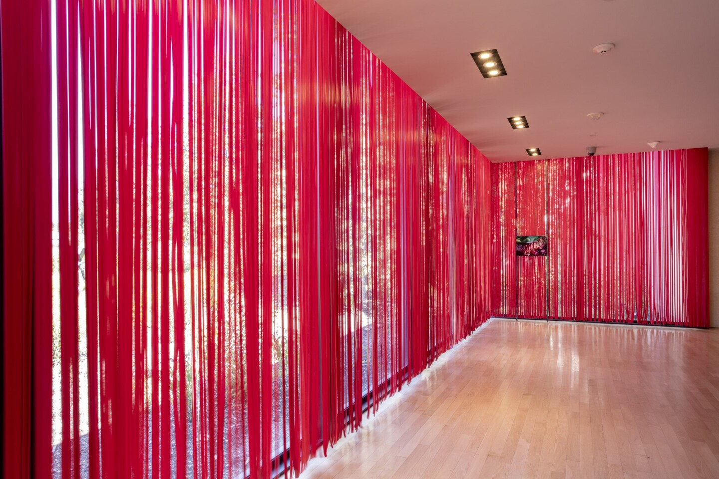"An installation view of Diane Severin Nguyen's work at ""Made in L.A. 2020: a version"" at The Huntington Library, Art Museum, and Botanical Gardens, San Marino. 